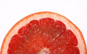 Half-of-grapefruit-slice1521