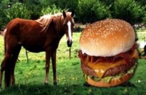 size2_67633_hamburguesa_de_caballo